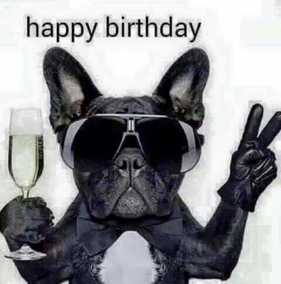 42 Happy Funny Birthday Images Funny Birthday Pictures 40