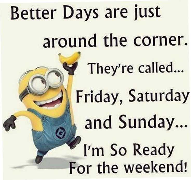 Minions Quotes Top 370 Funny Quotes With Pictures Sayings 10