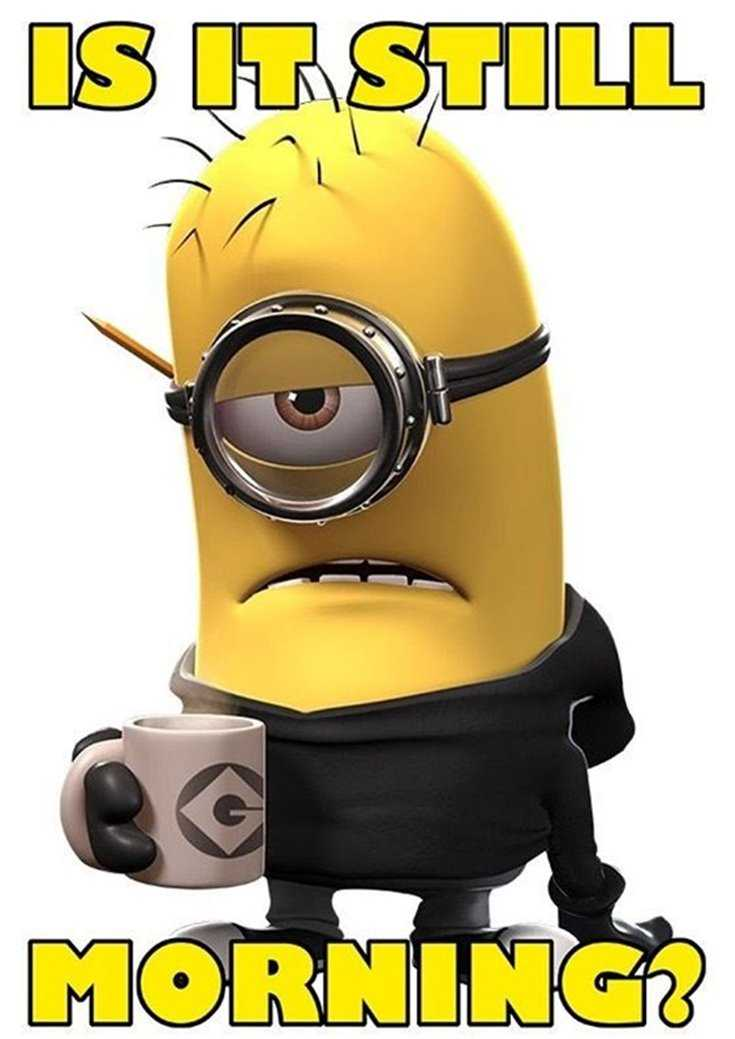 Minions Quotes Top 370 Funny Quotes With Pictures Sayings 18