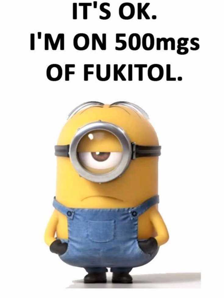 Minions Quotes Top 370 Funny Quotes With Pictures Sayings 24