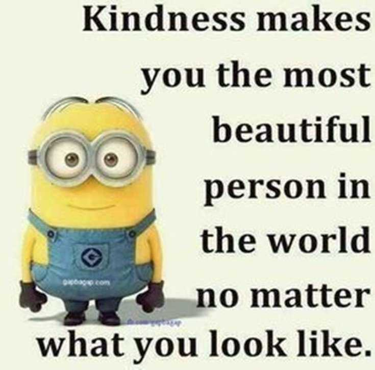 Minions Quotes Top 370 Funny Quotes With Pictures Sayings 29