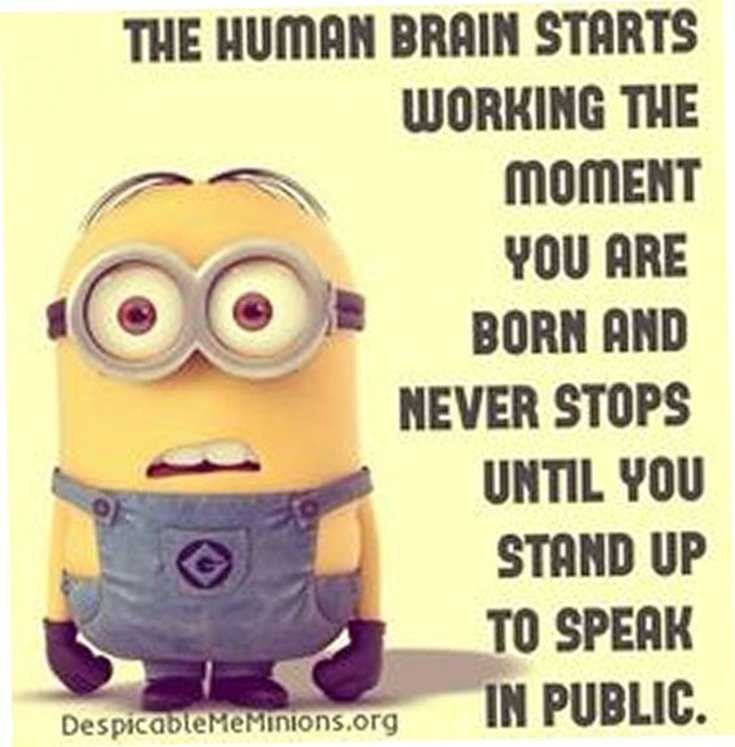 Minions Quotes Top 370 Funny Quotes With Pictures Sayings 34
