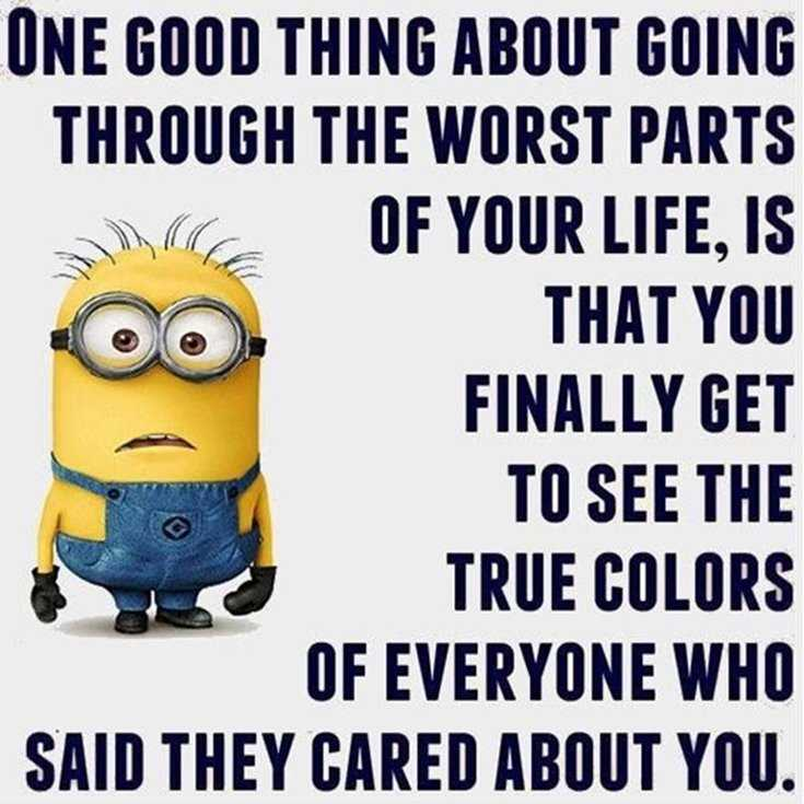 Minions Quotes Top 370 Funny Quotes With Pictures Sayings 38