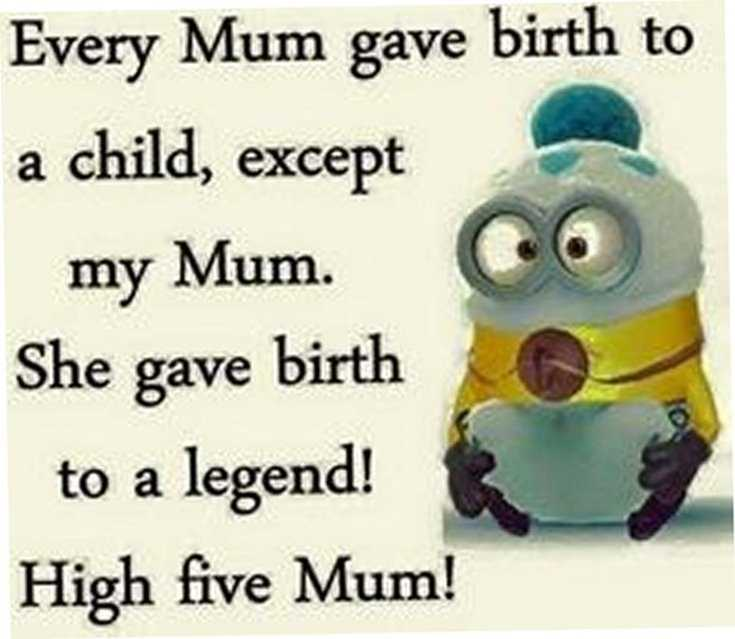 Minions Quotes Top 370 Funny Quotes With Pictures Sayings 45
