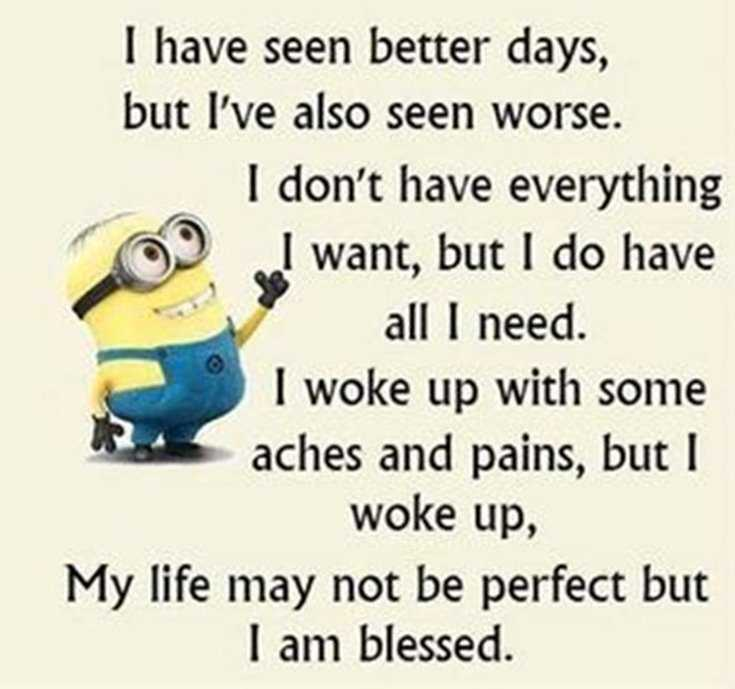 Minions Quotes Top 370 Funny Quotes With Pictures Sayings 58