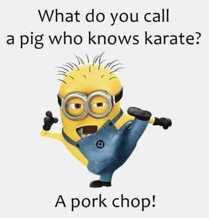 Minions Quotes Top 370 Funny Quotes With Pictures Sayings 65