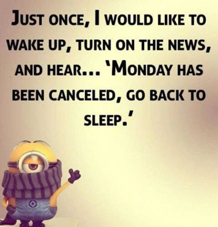 Minions Quotes Top 370 Funny Quotes With Pictures Sayings 7