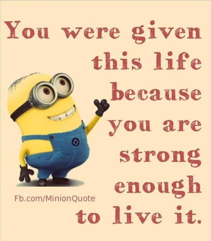 Minions Quotes Top 370 Funny Quotes With Pictures Sayings 87