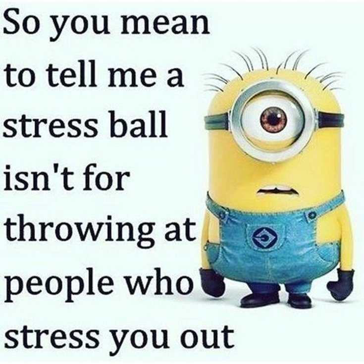 Quotes about Minions Top 370 Funny Quotes With Pictures Sayings 10