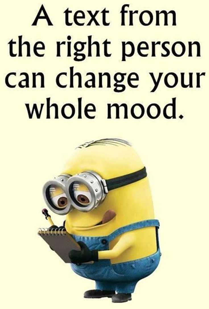 Quotes about Minions Top 370 Funny Quotes With Pictures Sayings 22