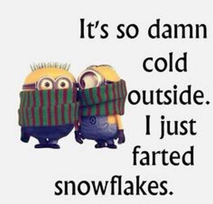Quotes about Minions Top 370 Funny Quotes With Pictures Sayings 32