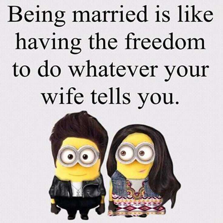 Quotes about Minions Top 370 Funny Quotes With Pictures Sayings 34
