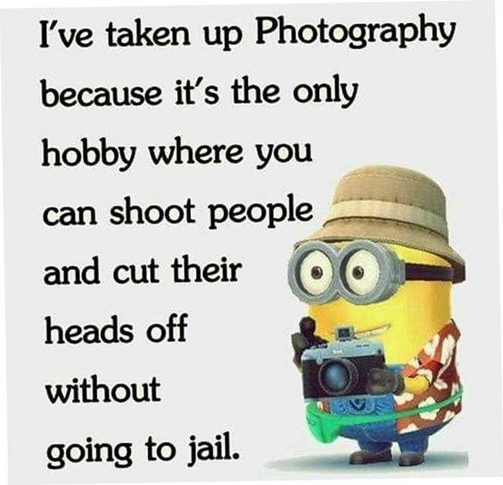 Quotes about Minions Top 370 Funny Quotes With Pictures Sayings 35