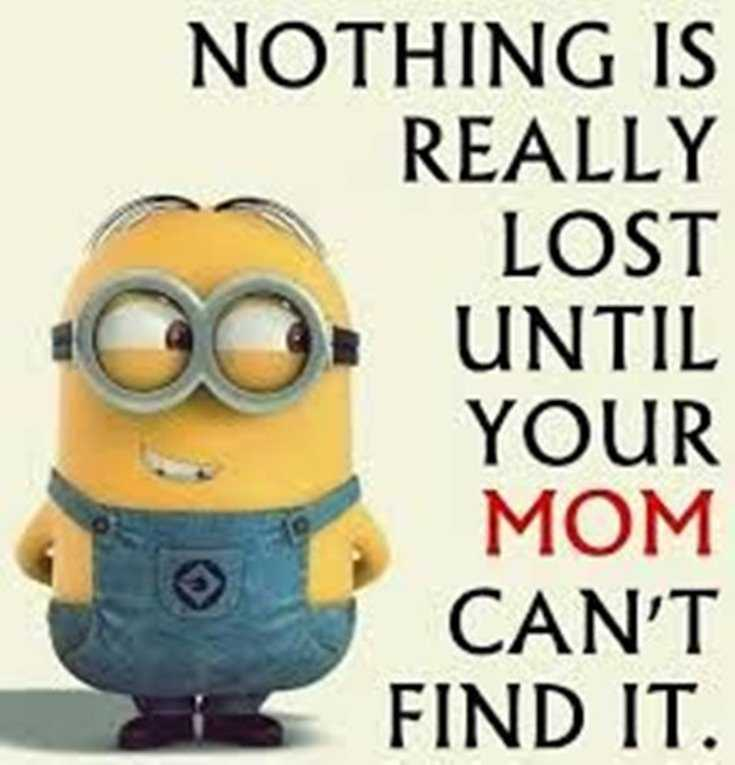 Quotes about Minions Top 370 Funny Quotes With Pictures Sayings 43
