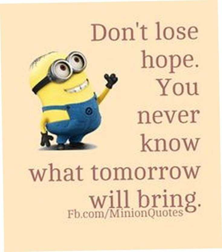 Quotes about Minions Top 370 Funny Quotes With Pictures Sayings 49