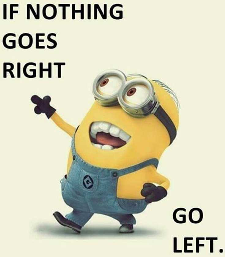 Quotes about Minions Top 370 Funny Quotes With Pictures Sayings 58
