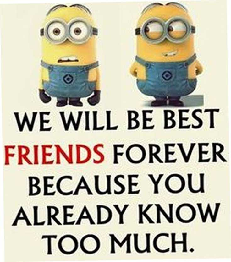 Quotes about Minions Top 370 Funny Quotes With Pictures Sayings 64