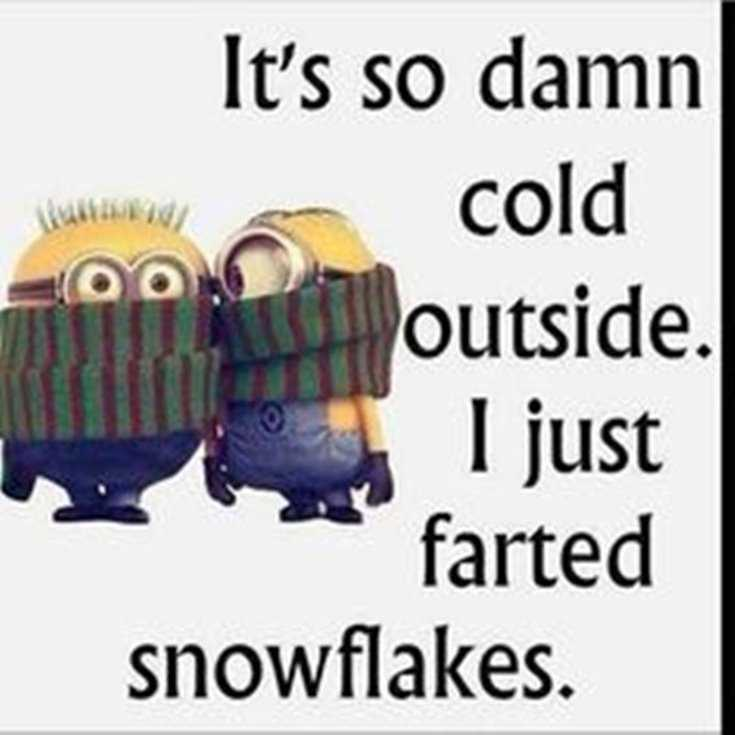Quotes about Minions Top 370 Funny Quotes With Pictures Sayings 66