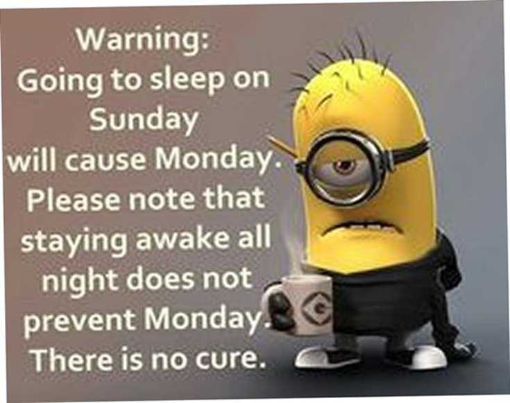 Quotes about Minions Top 370 Funny Quotes With Pictures Sayings 7