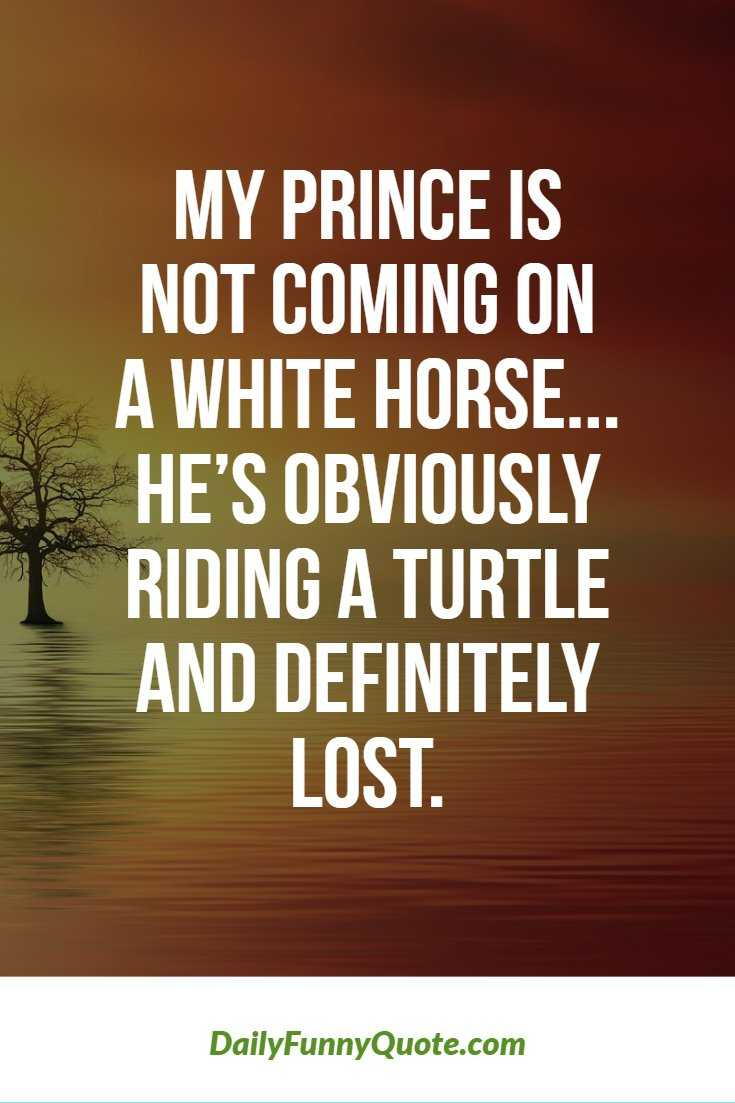 Top 370 Funny Quotes With Pictures Sayings 44
