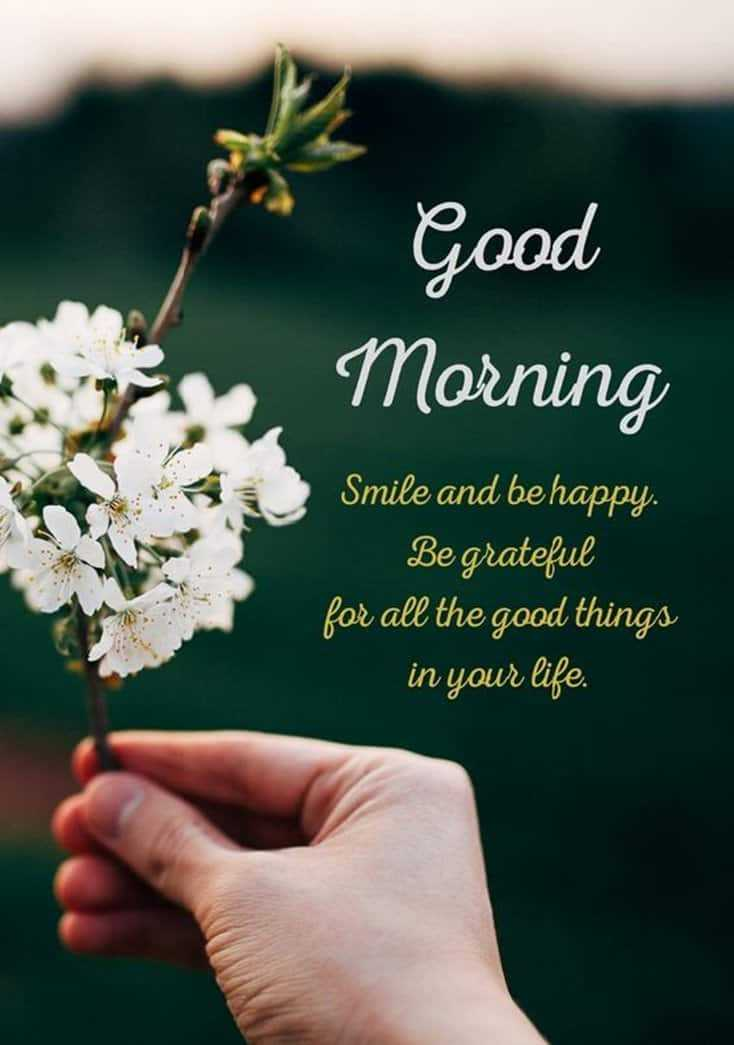 45 Funny Good Morning Quotes To Start Your Day With Smile 28