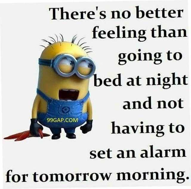 27 Funny Quotes Inspirational That will Inspire You — Minions Quotes 16