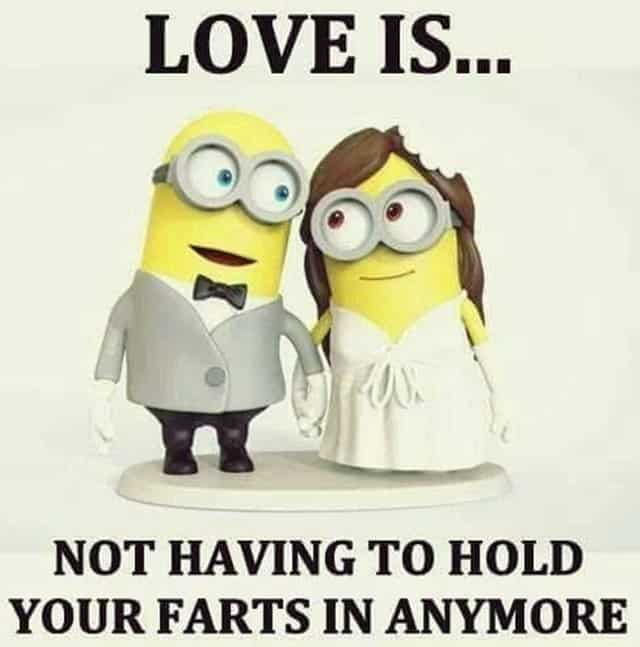 27 Funny Quotes Inspirational That will Inspire You — Minions Quotes 19