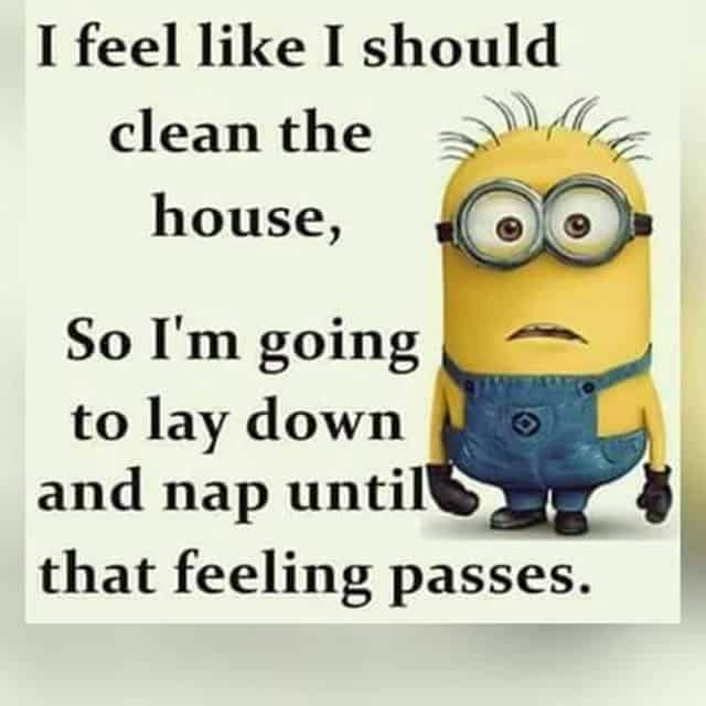 27 Funny Quotes Inspirational That will Inspire You — Minions Quotes 4