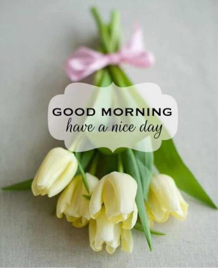 35 Good Morning Love Quotes For You to Life Sayings 11