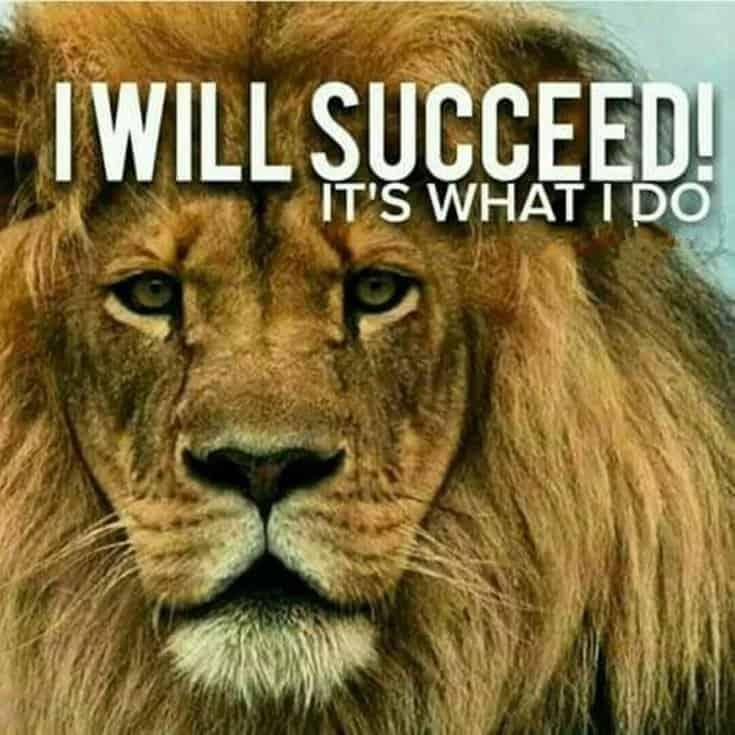 247 Motivational Inspirational Quotes 100