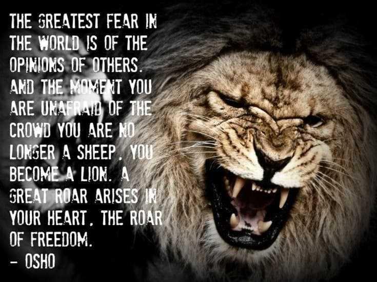 247 Motivational Inspirational Quotes 102