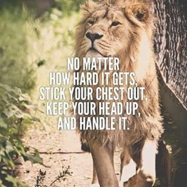 247 Motivational Inspirational Quotes 103