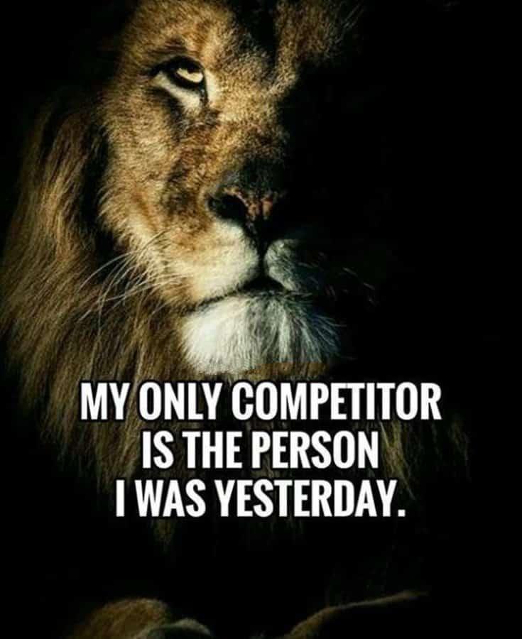 247 Motivational Inspirational Quotes 105