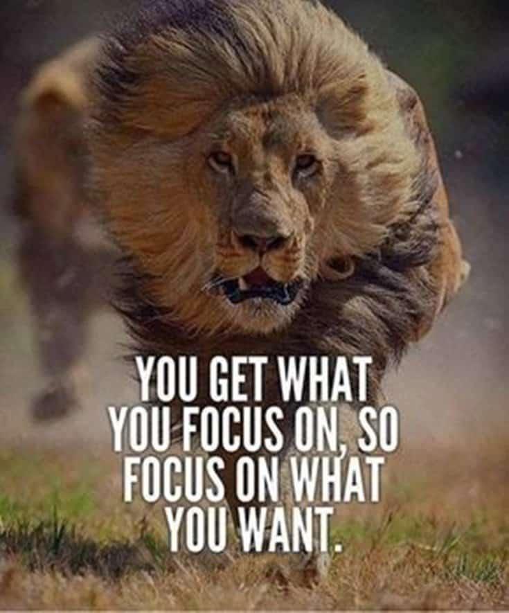247 Motivational Inspirational Quotes 107