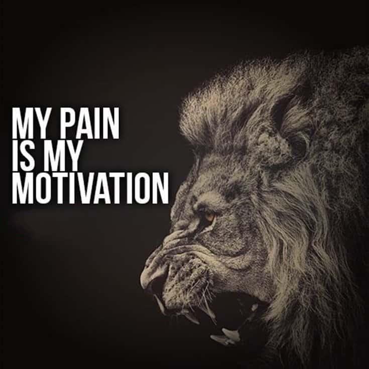 247 Motivational Inspirational Quotes 111