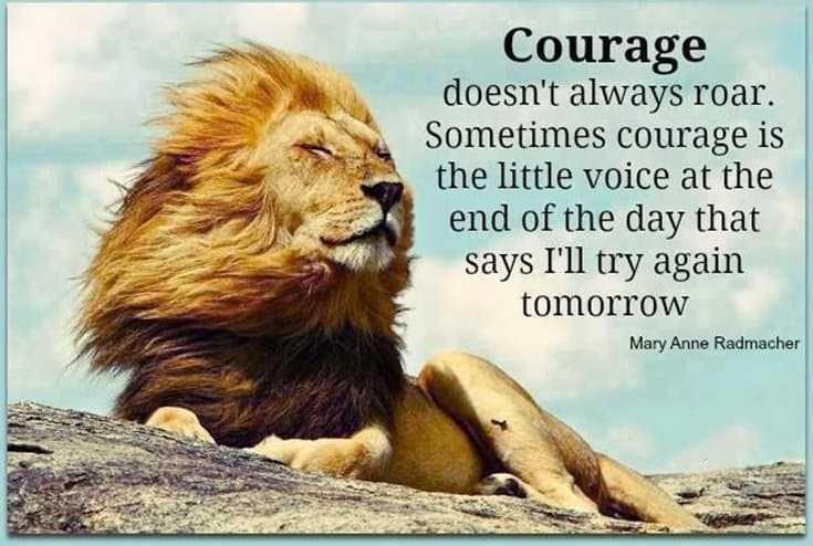 247 Motivational Inspirational Quotes 112
