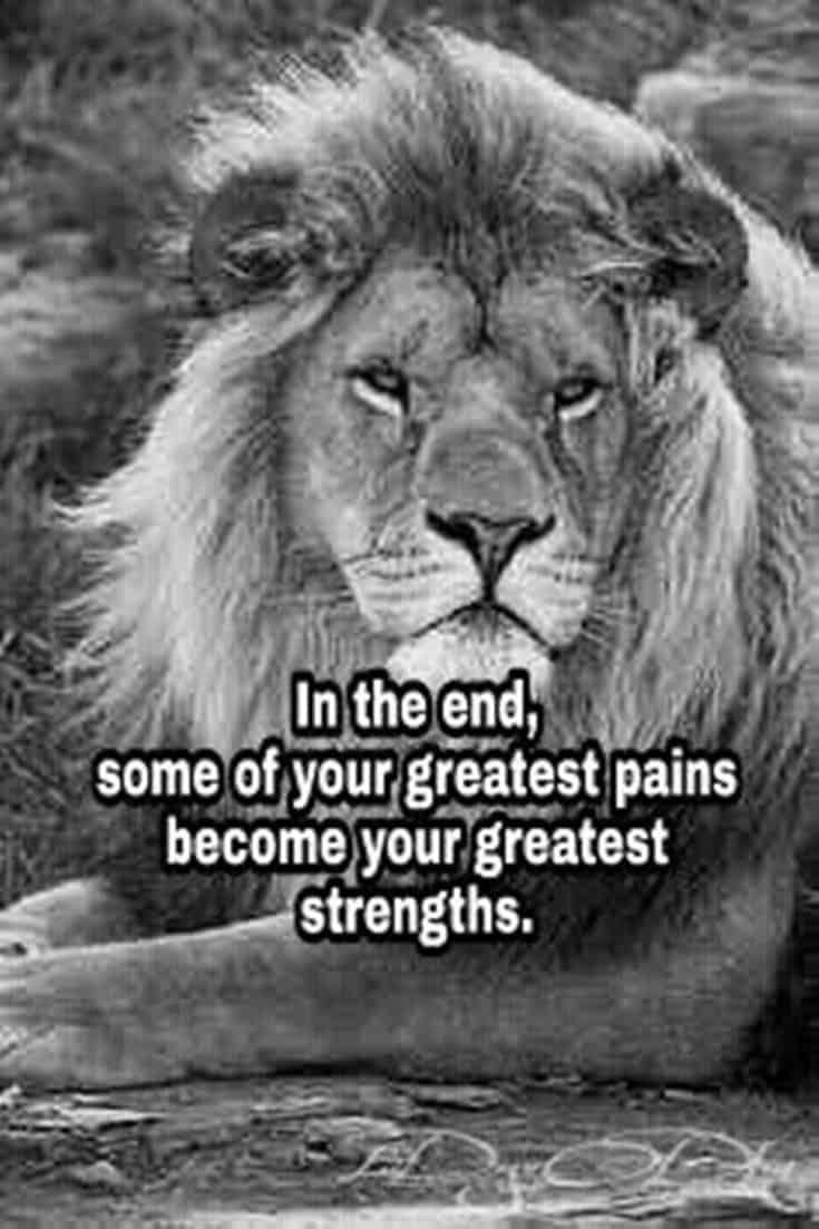 247 Motivational Inspirational Quotes 124