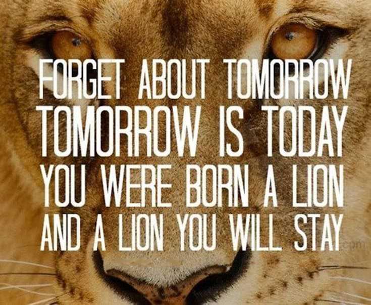 247 Motivational Inspirational Quotes 137