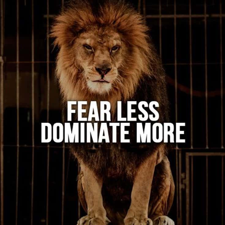 247 Motivational Inspirational Quotes 148