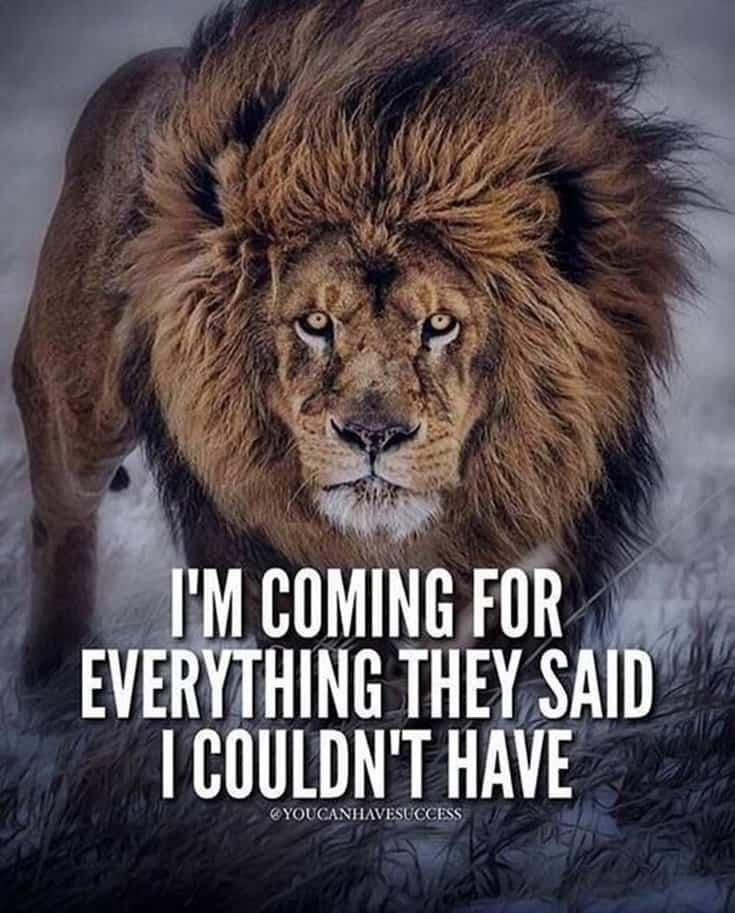 247 Motivational Inspirational Quotes 159