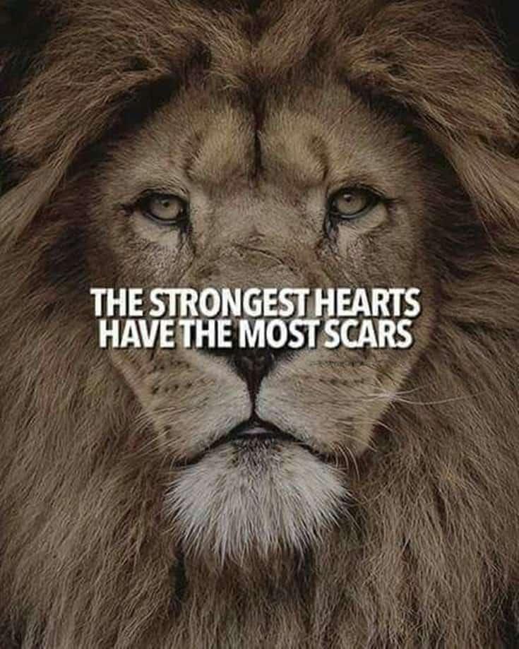 247 Motivational Inspirational Quotes 161