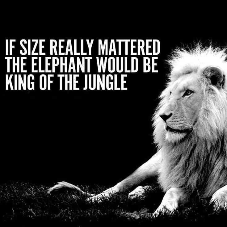247 Motivational Inspirational Quotes 162