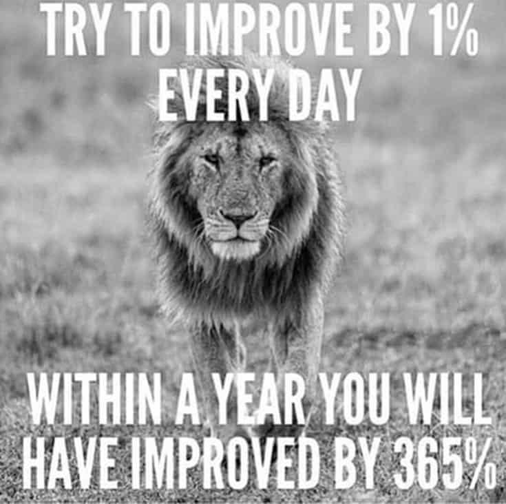 247 Motivational Inspirational Quotes 169