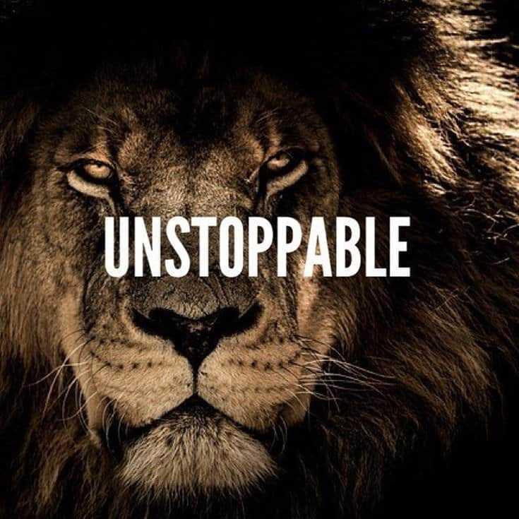 247 Motivational Inspirational Quotes 19