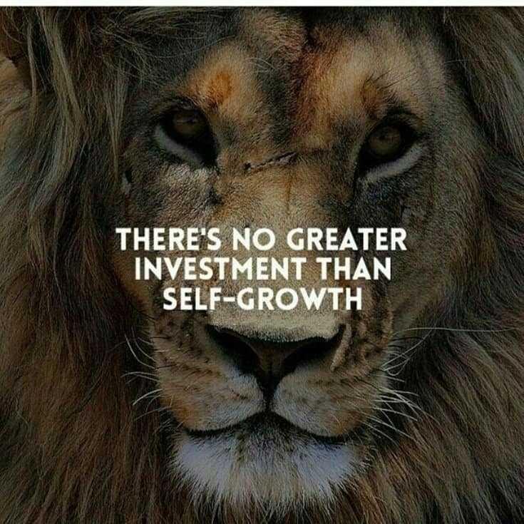 247 Motivational Inspirational Quotes 195