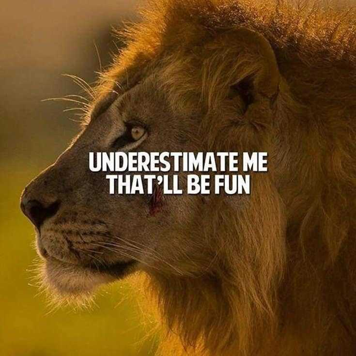 247 Motivational Inspirational Quotes 22