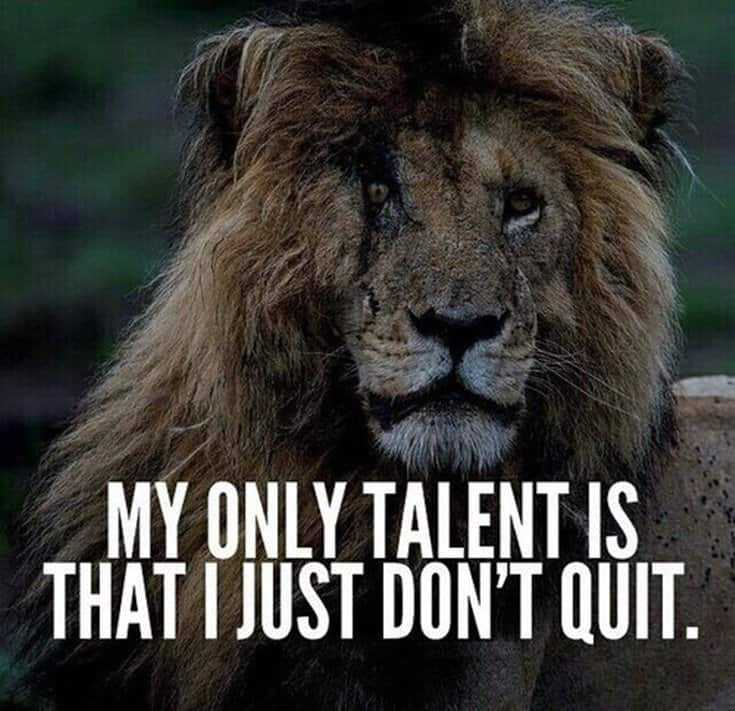 247 Motivational Inspirational Quotes 234