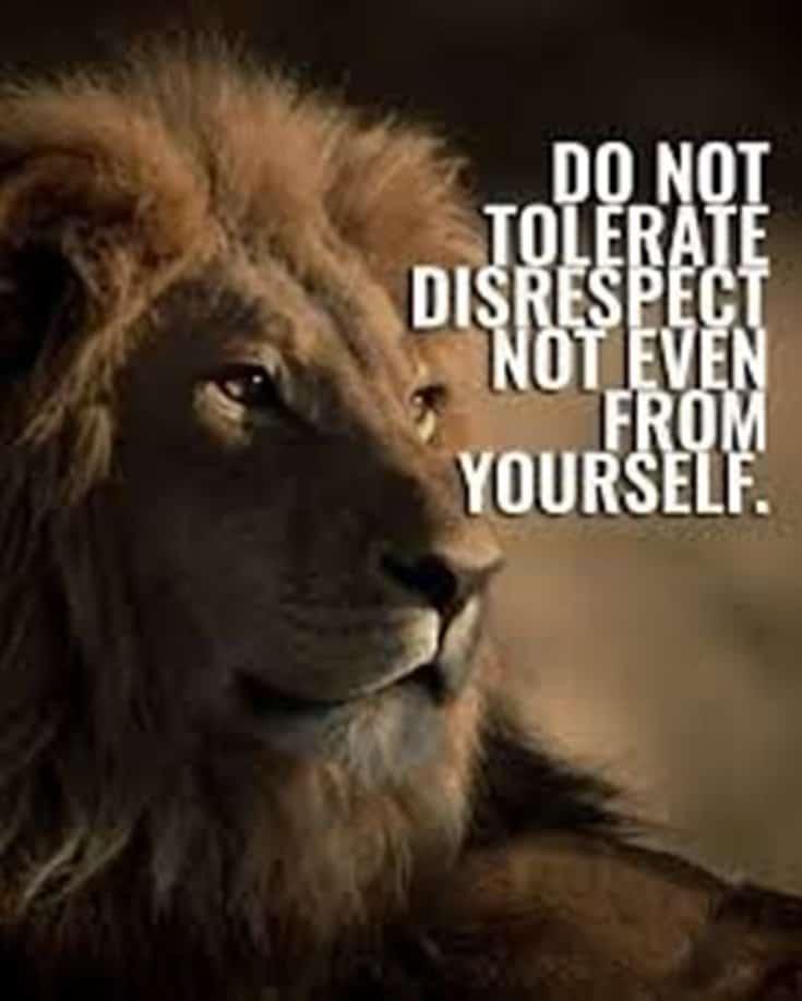 247 Motivational Inspirational Quotes 24