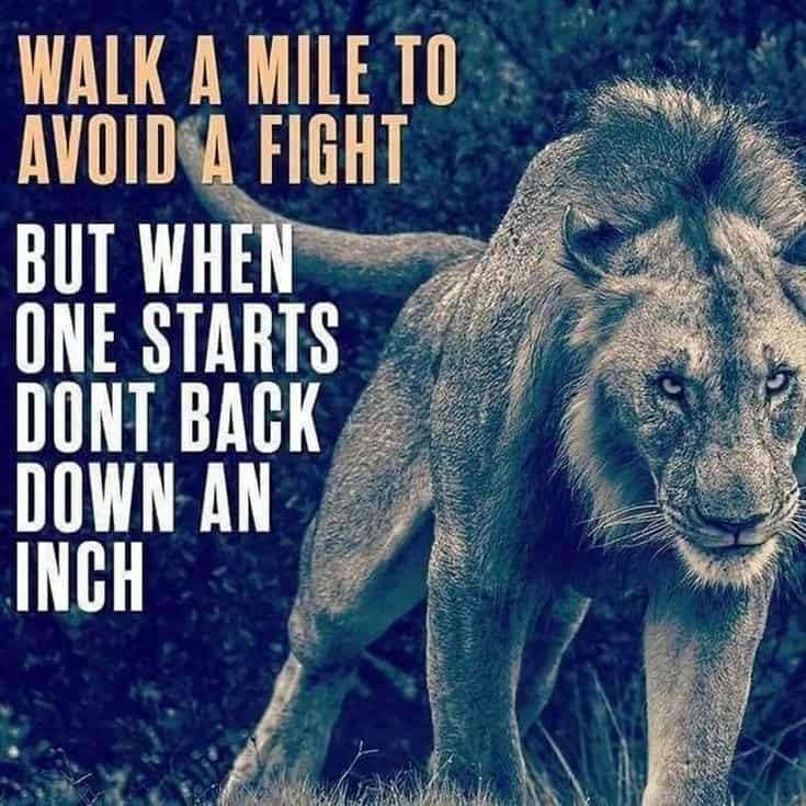 247 Motivational Inspirational Quotes 32
