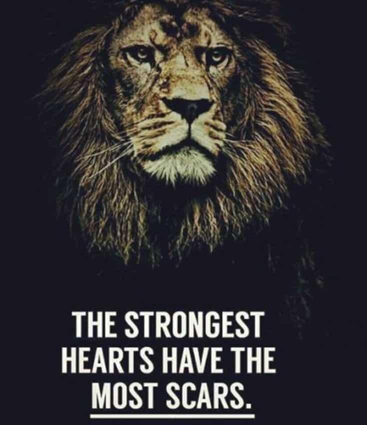 247 Motivational Inspirational Quotes 34